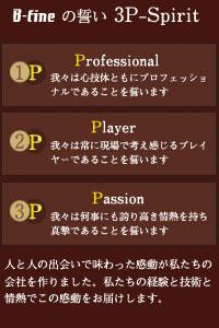 3P-Spirit